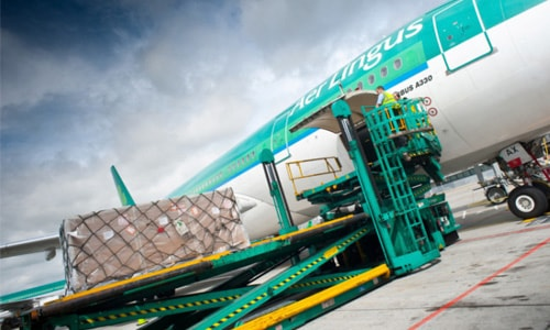 aer lingus air cargo bluebird