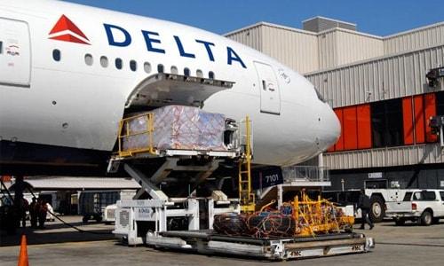 Delta Air Cargo Freight bluebird